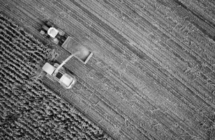 agriculture-industries-sodaq-photo